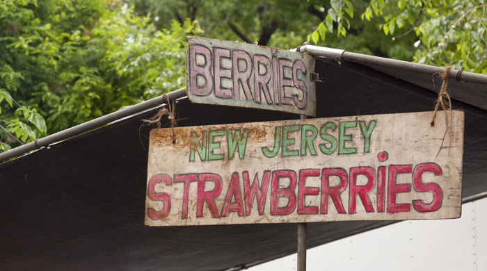 farmers market, new jersey