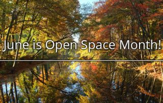 June is open space month
